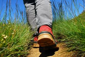 un marcheur sur un chemin de randonnée