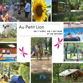 10 ans ! 10 astuces pour des vacances réussies au Petit Lion